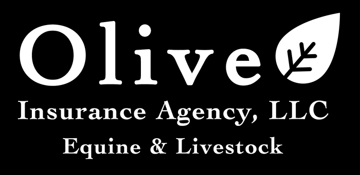 Advertisement for Olive Insurance Agency