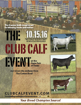 The Club Calf Event